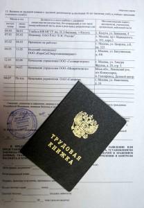Проверка заявления на оформление загранпаспорта